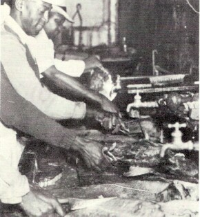 Fish cleaning production line at Goff's; Photo from The Delaware County Advocate, July 1942